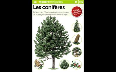 Mini Guide Les conifères